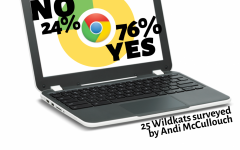 Twenty-five Wildkats were surveyed about the new Chromebooks by junior Andi McCulloch.