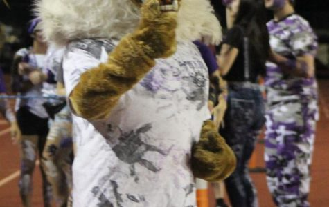 THUMBS UP. Disguised at Willie the Wildkat, senior Jazmine Boston fires up the crowd at the first home game.