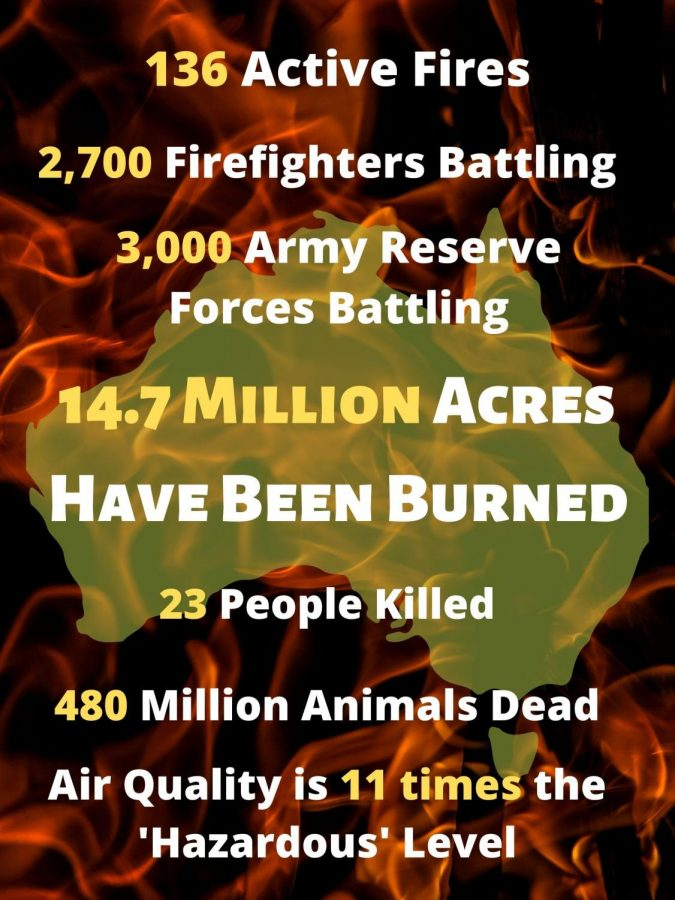 The+statistics+are+staggering.+Australia+has+lost+so+much+since+the+brush-fires+began+in+November.+There+are+ways+to+help.+