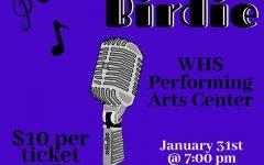 Bye Bye Birdie debuts Friday night