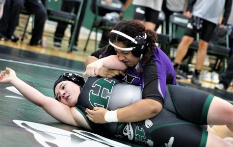 Wrestlers prepare for district with two duals this week
