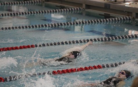 Aquakats send record number to regionals