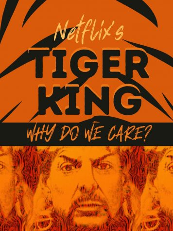 Over 64 million viewers have watched the Netflix documentary Tiger King: Murder, Mayhem and Madness.