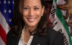 Kamilla Harris was named as Joe Biden's running mate this week.