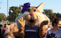 WE'VE GOT SPIRIT. Willy the Wildkat shows school spirit at the 2019 homecoming parade.