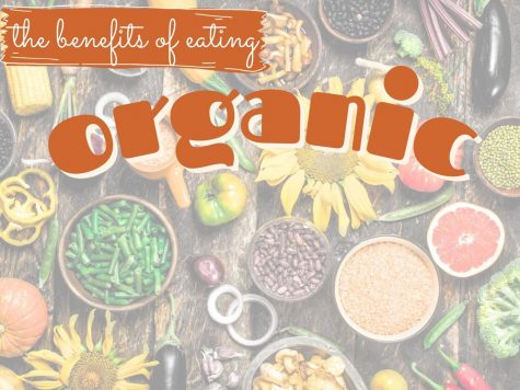 HEALTHY OPTIONS.  Offering organic options in the cafeteria would give healthier alternatives for students and staff members.